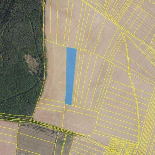Prodej zemědělských pozemků 6 888 m², k.ú. Veverská Bítýška, okres Brno-venkov