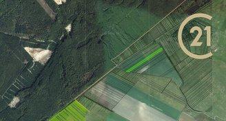 Prodej zemědělských pozemků 35 226 m², k.ú. Plavecký Peter, okres Senica