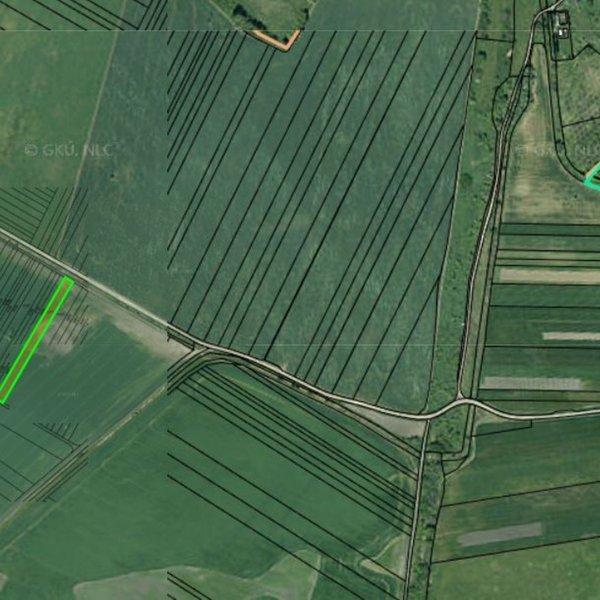 Prodej zemědělských pozemků 32 564 m², k.ú. Prievaly, okres Senica