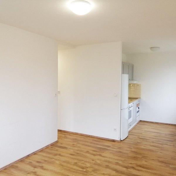 Krásný slunný tichý byt 2+kk / 40 m2 po rekonstrukci