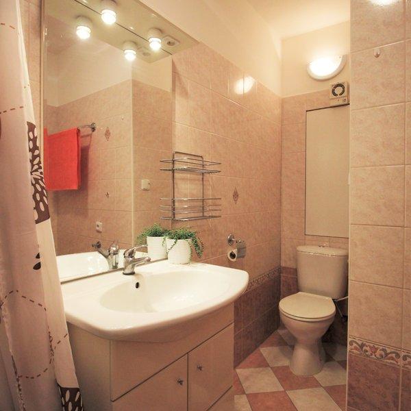 Pronájem pěkného bytu 1+1 ul. Stará Osada, Brno - Židenice