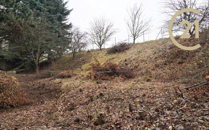 Prodej pozemku pro výstavbu chaty, 403m² - Blansko - Češkovice