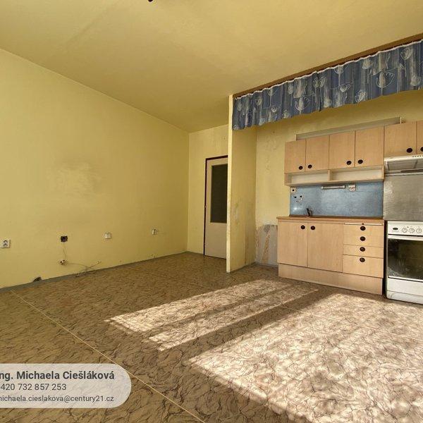 Prodej, byt 2+kk/L, 43 m², Liberec