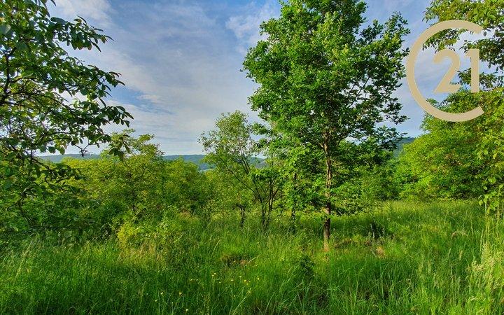 Prodej pozemku v obci Předklášteří
