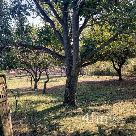 Prodej, Pozemky pro bydlení, 1718m² - Drysice