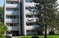 Pronájem, Byt 1+1, 45 m²  Frýdek-Místek, ul. Lesní