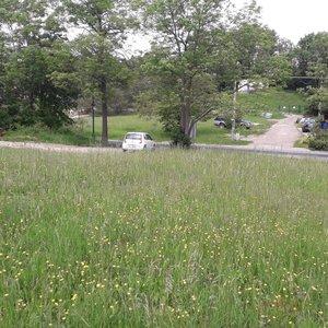 Prodej, Pozemky pro bydlení, 941m² - Veliny