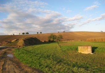 Prodej pozemku v lokalitě Krumvíř, okres Břeclav - obrázek č. 1