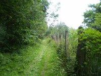 Prodej pozemku v lokalitě Vyškov, okres Vyškov - obrázek č. 6
