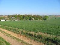 Prodej pozemku v lokalitě Tulešice, okres Znojmo - obrázek č. 3