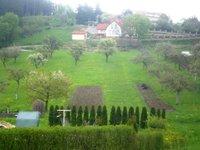 Prodej pozemku v lokalitě Sloup, okres Blansko - obrázek č. 5