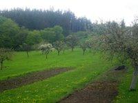Prodej pozemku v lokalitě Sloup, okres Blansko - obrázek č. 3