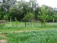Prodej pozemku v lokalitě Medlov, okres Brno-venkov - obrázek č. 2