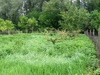 Prodej pozemku v lokalitě Medlov, okres Brno-venkov - obrázek č. 3