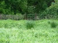 Prodej pozemku v lokalitě Medlov, okres Brno-venkov - obrázek č. 4
