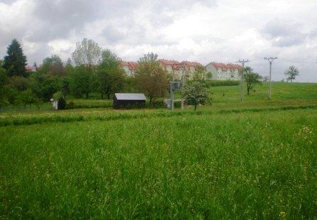 Prodej pozemku v lokalitě Petrovice, okres Blansko - obrázek č. 1