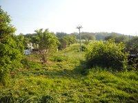 Prodej pozemku v lokalitě Jabloňany, okres Blansko - obrázek č. 2