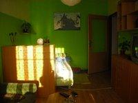 Pronájem bytu v lokalitě Dukovany, okres Třebíč - obrázek č. 5