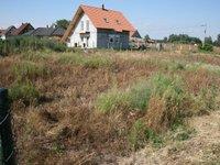 Prodej pozemku v lokalitě Malešovice, okres Brno-venkov - obrázek č. 2