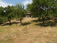 Prodej pozemku v lokalitě Slavkov u Brna, okres Vyškov - obrázek č. 3