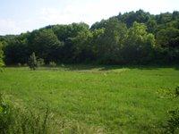 Prodej pozemku v lokalitě Boleradice, okres Břeclav - obrázek č. 4