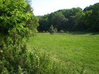 Prodej pozemku v lokalitě Boleradice, okres Břeclav - obrázek č. 3