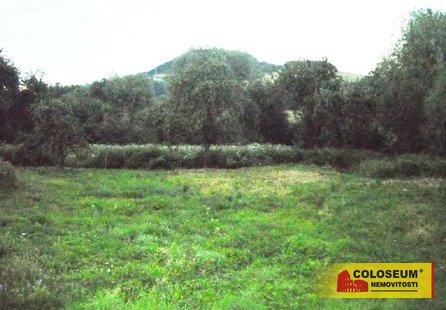 Prodej pozemku v lokalitě Letovice, okres Blansko - obrázek č. 1
