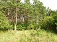 Prodej pozemku v lokalitě Moravské Bránice, okres Brno-venkov - obrázek č. 3