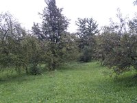 Prodej pozemku v lokalitě Popovice, okres Uherské Hradiště - obrázek č. 3