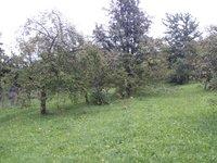 Prodej pozemku v lokalitě Popovice, okres Uherské Hradiště - obrázek č. 4