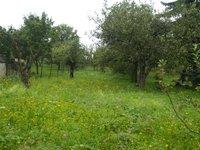 Prodej pozemku v lokalitě Charváty, okres Olomouc - obrázek č. 2