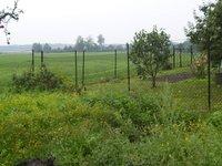 Prodej pozemku v lokalitě Charváty, okres Olomouc - obrázek č. 4