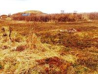 Prodej pozemku v lokalitě Chudčice, okres Brno-venkov - obrázek č. 2