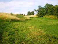 Prodej pozemku v lokalitě Kotvrdovice, okres Blansko - obrázek č. 3