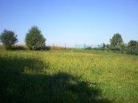 Prodej pozemku v lokalitě Kulířov, okres Blansko - obrázek č. 3