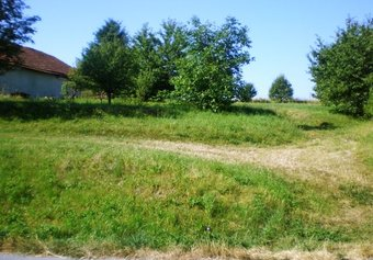 Prodej pozemku v lokalitě Kulířov, okres Blansko - obrázek č. 1