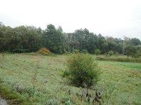 Prodej pozemku v lokalitě Doubravice nad Svitavou, okres Blansko - obrázek č. 2