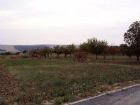 Prodej pozemku v lokalitě Kobeřice u Brna, okres Vyškov - obrázek č. 3