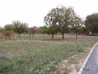 Prodej pozemku v lokalitě Kobeřice u Brna, okres Vyškov - obrázek č. 2