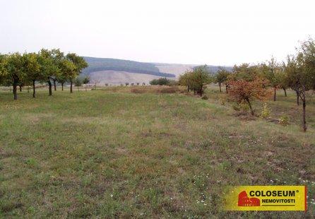 Prodej pozemku v lokalitě Kobeřice u Brna, okres Vyškov - obrázek č. 1