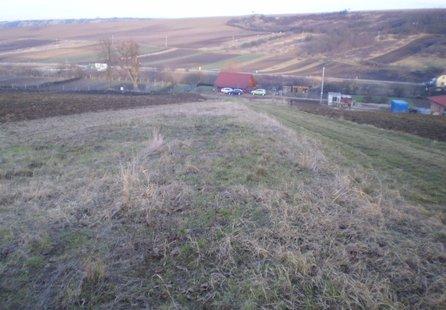 Prodej pozemku v lokalitě Bošovice, okres Vyškov - obrázek č. 1