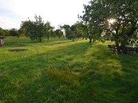 Prodej pozemku v lokalitě Šatov, okres Znojmo - obrázek č. 2