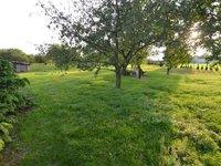 Prodej pozemku v lokalitě Šatov, okres Znojmo - obrázek č. 4