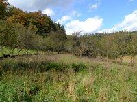 Prodej pozemku v lokalitě Všechovice, okres Brno-venkov - obrázek č. 2