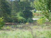 Prodej pozemku v lokalitě Milonice, okres Blansko - obrázek č. 4