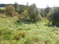 Prodej pozemku v lokalitě Milonice, okres Blansko - obrázek č. 3