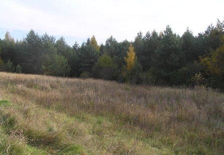 Prodej pozemku v lokalitě Kunštát, okres Blansko - obrázek č. 1