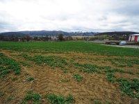 Prodej pozemku v lokalitě Lelekovice, okres Brno-venkov - obrázek č. 8