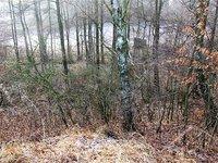Prodej pozemku v lokalitě Brodek u Konice, okres Prostějov - obrázek č. 8