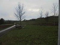 Prodej pozemku v lokalitě Jabloňany, okres Blansko - obrázek č. 5